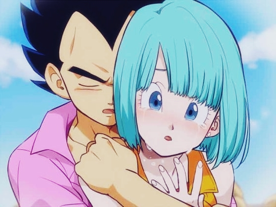 How Did Vegeta and Bulma End Up Together